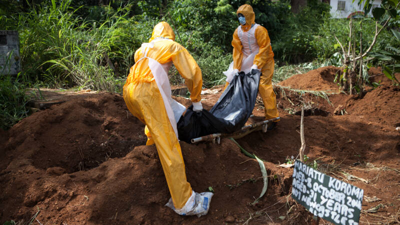 Ebola returns to Africa: 'act quickly before the virus spreads'
