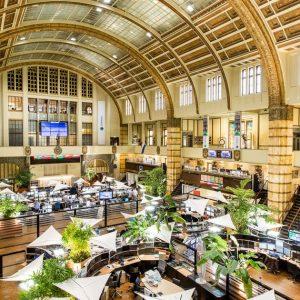 Galapagos in rebound in rising stock market |  Financial