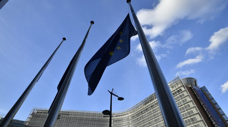 The Commission was sued by the European Parliament