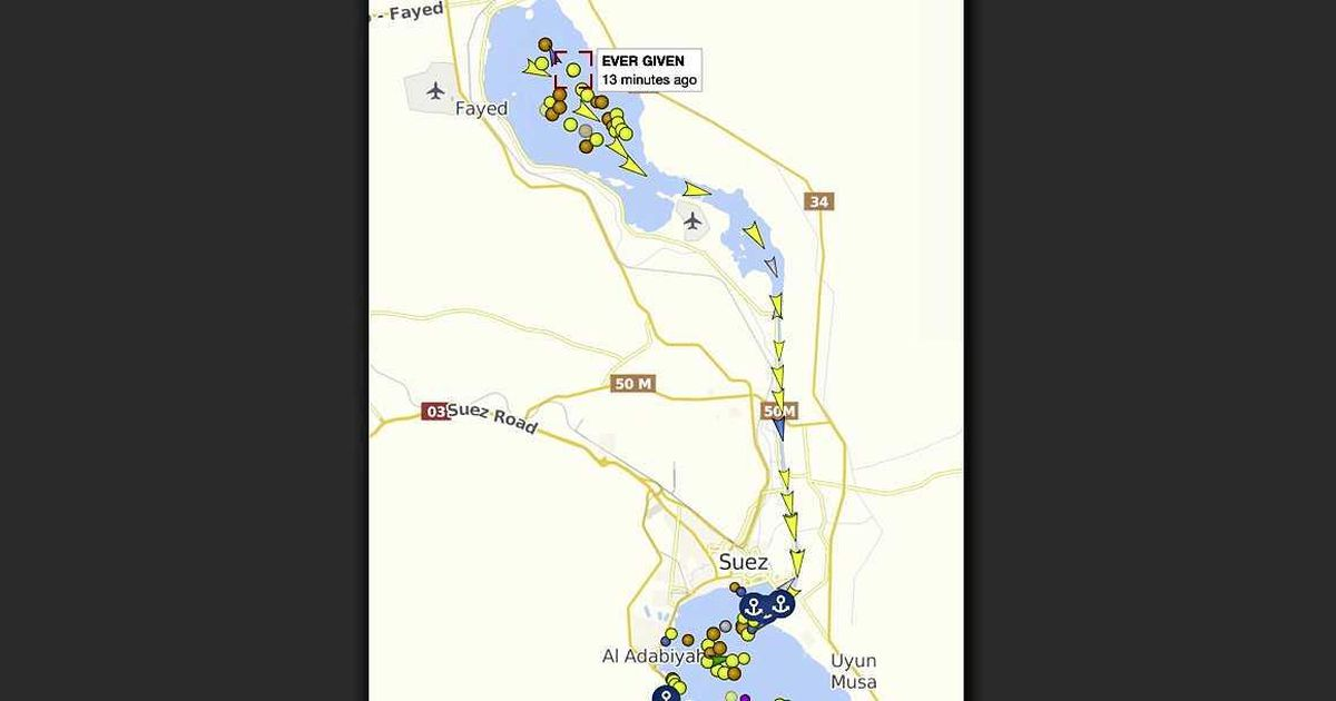Ships finally meander through the Suez Canal: animals allowed first |  Abroad