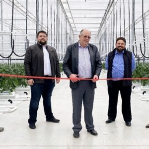 Bomas farms may begin to grow in the 'largest greenhouse' in North America