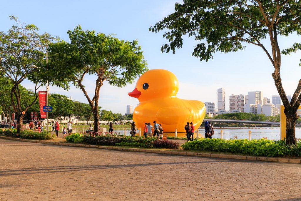 How rubber ducks reveal ocean secrets