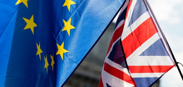 Brexit shuts down dairy exports from UK - News Melk