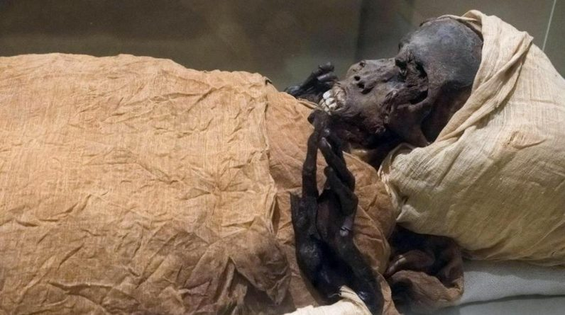 Egypt transfers 22 royal mummies in a large ceremonial procession |  right Now