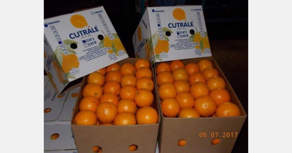 Brazilian orange growers file suit against Cutrale across UK