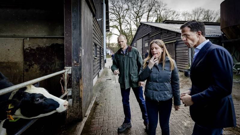 Cabinet tip: Make livestock farms smaller to prevent disease