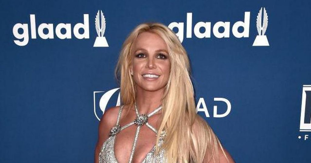 Britney reunited with her dogs    stars