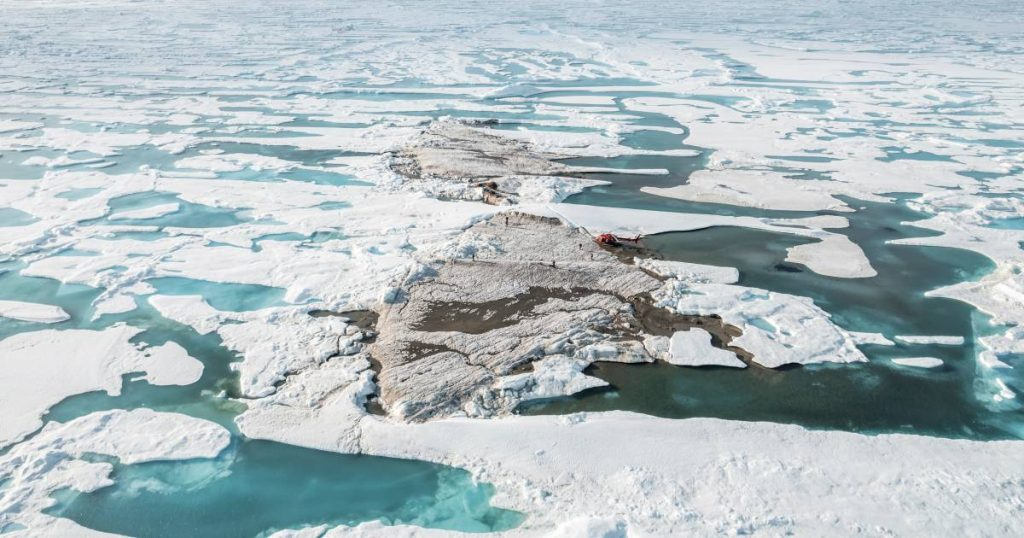 Greenland expedition accidentally discovers an island in the far north of the world    Science