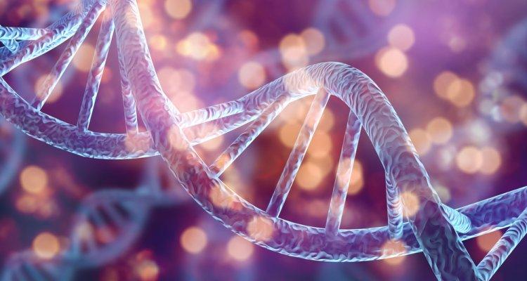 CRISPR - Link